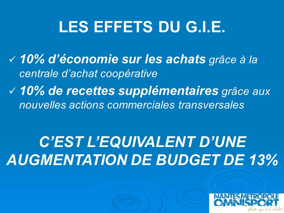 LES EFFETS DU G.I.E. 10% déconomie sur les achats grâce à la centrale dachat coopérative 10% de recettes supplémentaires grâce aux nouvelles actions c