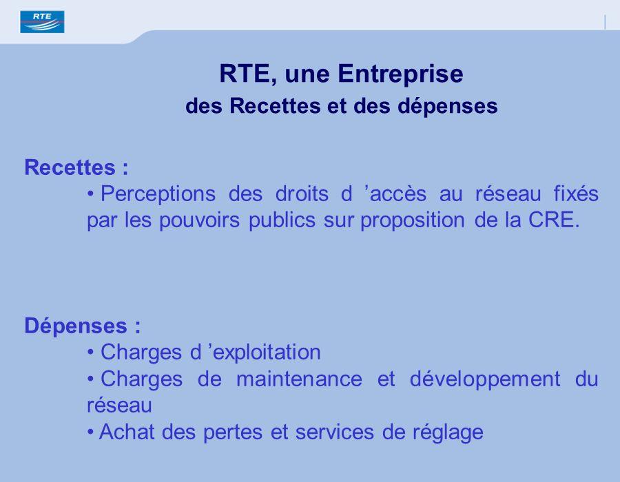 Recettes : Perceptions des droits d accès au réseau fixés par les pouvoirs publics sur proposition de la CRE. Dépenses : Charges d exploitation Charge