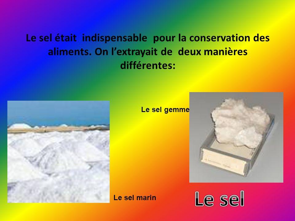 Le sel était indispensable pour la conservation des aliments. On lextrayait de deux manières différentes: Le sel marin Le sel gemme