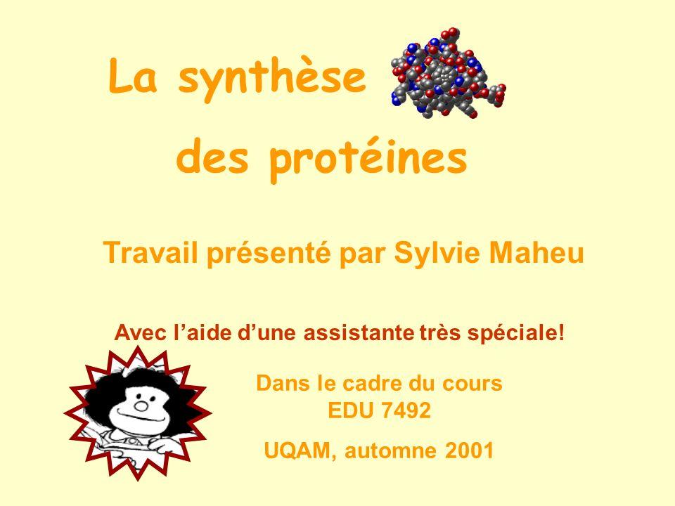 La synthèse des protéines Travail présenté par Sylvie Maheu Avec laide dune assistante très spéciale! Dans le cadre du cours EDU 7492 UQAM, automne 20