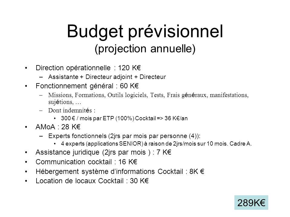 Budget prévisionnel (projection annuelle) Direction opérationnelle : 120 K –Assistante + Directeur adjoint + Directeur Fonctionnement général : 60 K –Missions, Formations, Outils logiciels, Tests, Frais g é n é raux, manifestations, suj é tions, … –Dont indemnit é s : 300 / mois par ETP (100%) Cocktail => 36 K/an AMoA : 28 K –Experts fonctionnels (2jrs par mois par personne (4)): 4 experts (applications SENIOR) à raison de 2jrs/mois sur 10 mois.