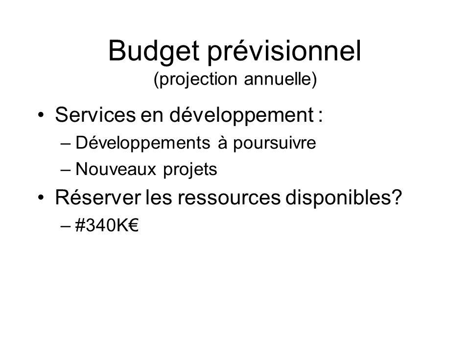 Budget prévisionnel (projection annuelle) Services en développement : –Développements à poursuivre –Nouveaux projets Réserver les ressources disponibles.
