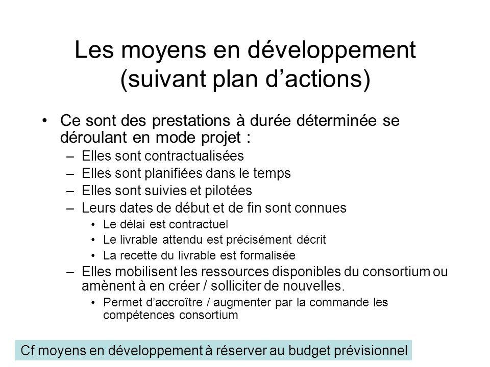 Les moyens en développement (suivant plan dactions) Ce sont des prestations à durée déterminée se déroulant en mode projet : –Elles sont contractualis