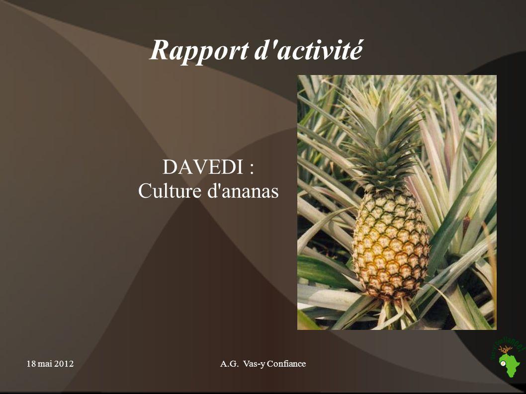 18 mai 2012A.G. Vas-y Confiance Rapport d'activité DAVEDI : Culture d'ananas