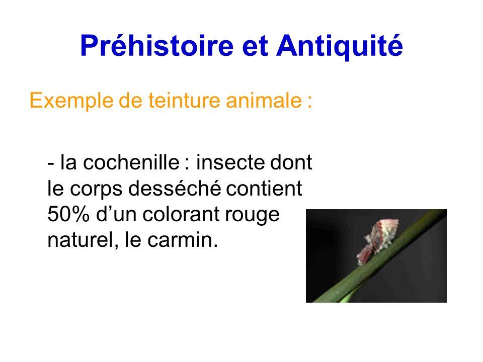 Préhistoire et Antiquité Exemple de teinture animale : - la cochenille : insecte dont le corps desséché contient 50% dun colorant rouge naturel, le carmin.