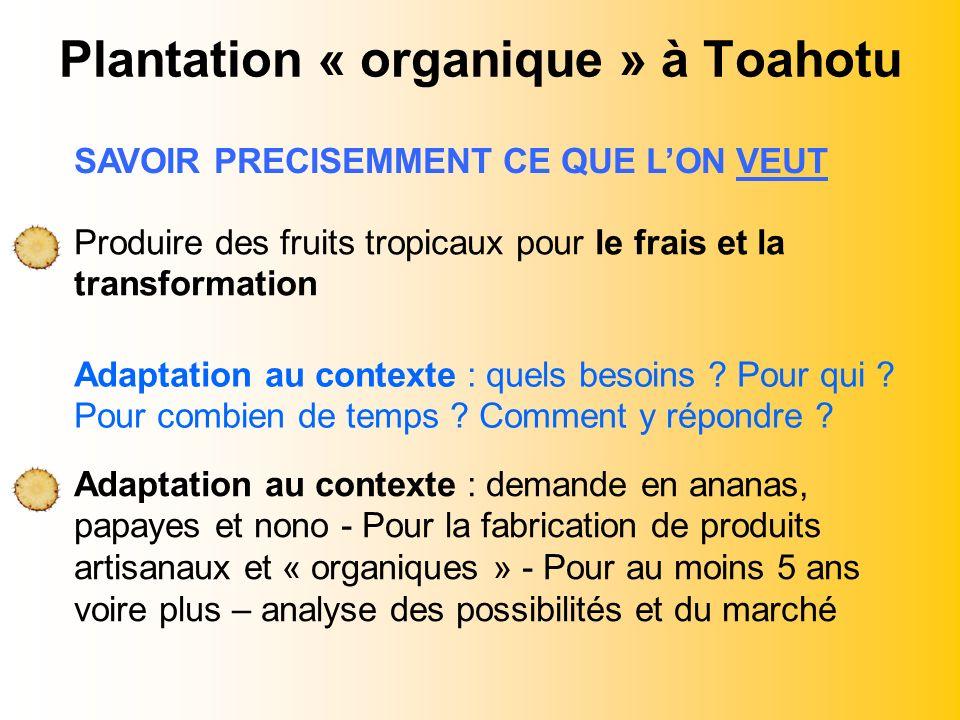 Plantation « organique » à Toahotu Adaptation au contexte : demande en ananas, papayes et nono - Pour la fabrication de produits artisanaux et « organ