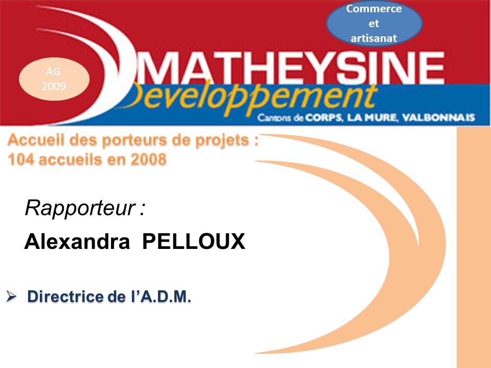 AG 2009 Directrice de lA.D.M. Directrice de lA.D.M. Commerce et artisanat Rapporteur : Alexandra PELLOUX