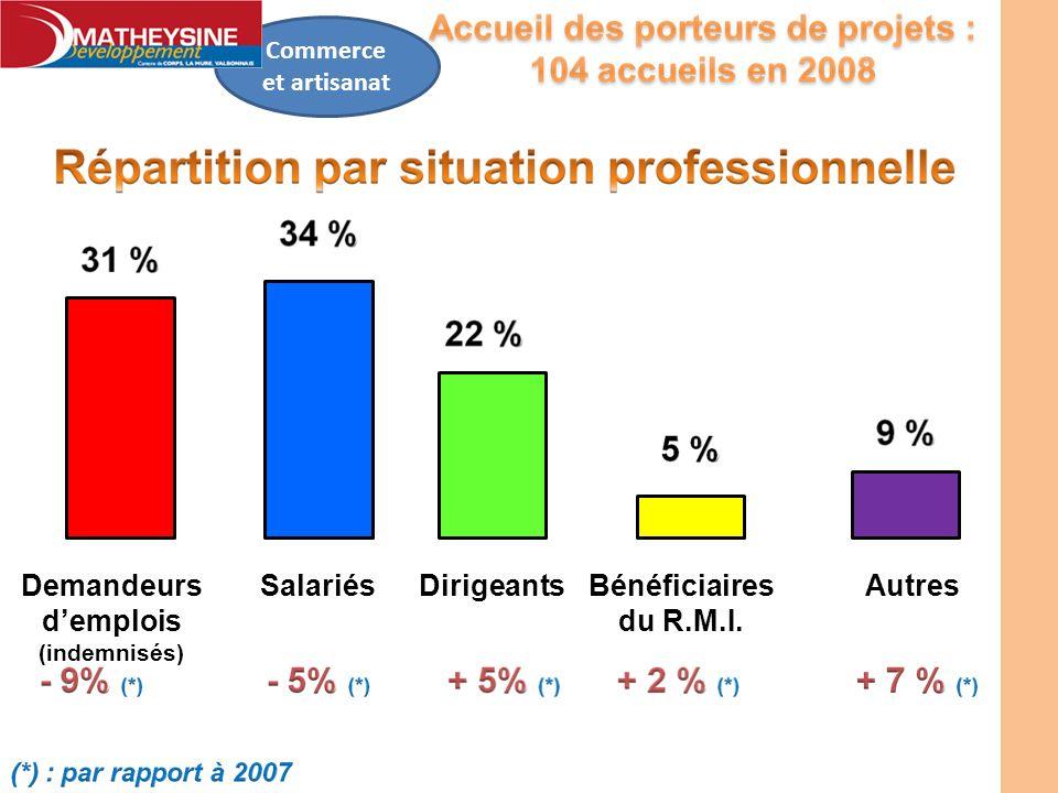 Commerce et artisanat Demandeurs demplois (indemnisés) SalariésDirigeantsBénéficiaires du R.M.I. Autres