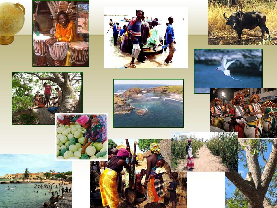 3.4. Stratégie de communication Positionnement : Lécotourisme au Sénégal. L'écotourisme (ou tourisme vert) consiste en un tourisme écologique dont l'o