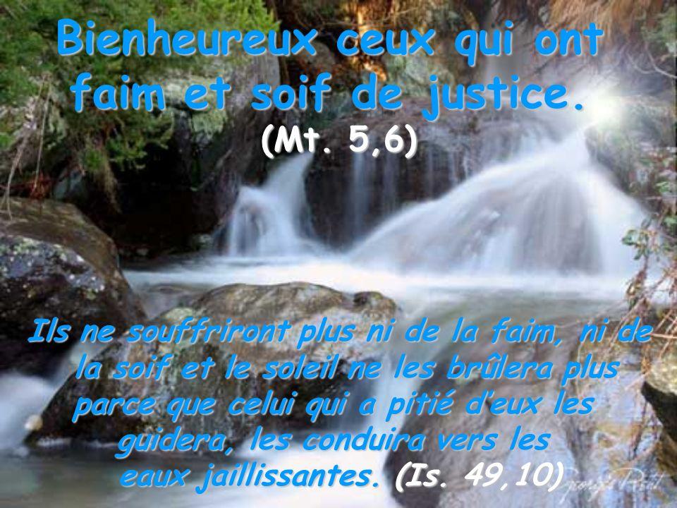 Bienheureux ceux qui ont faim et soif de justice. (Mt. 5,6) Ils ne souffriront plus ni de la faim, ni de la soif et le soleil ne les brûlera plus la s