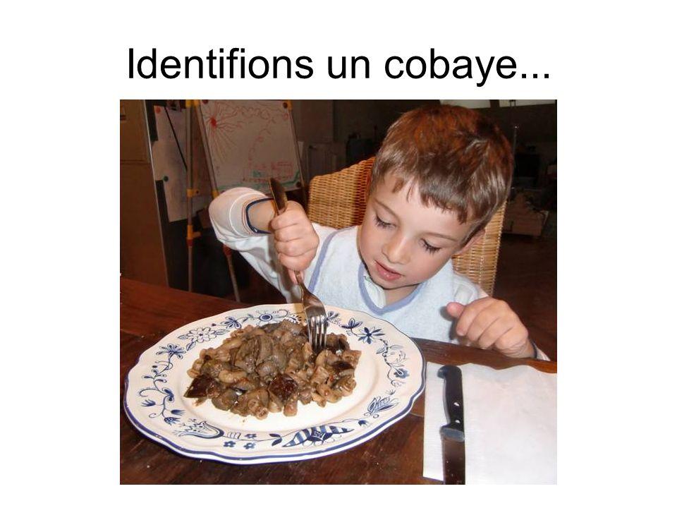 Identifions un cobaye...