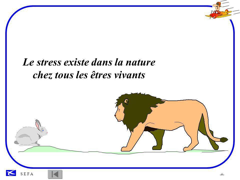 28 S E F A Le stress est d abord bénéfique puisqu il mobilise toutes nos ressources en vue de l attaque ou la défense.