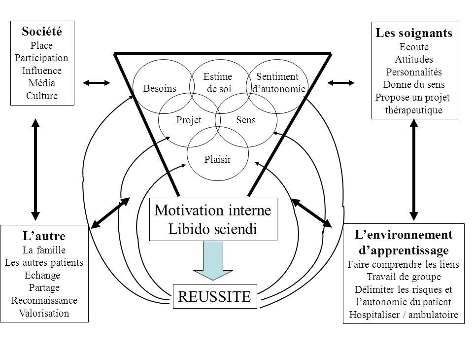 Facteurs internes influençant la motivation Besoins fondamentaux Estime de soi Sentiment dautonomie ProjetSens Plaisir Motivation interne Libido scien