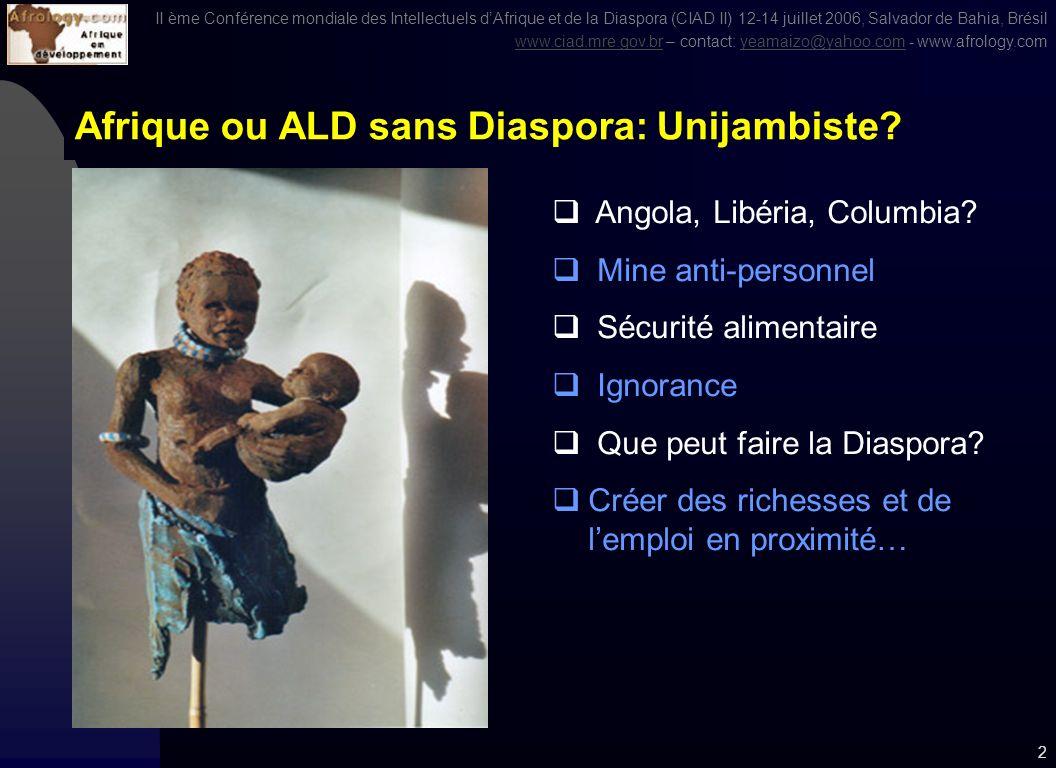 II ème Conférence mondiale des Intellectuels dAfrique et de la Diaspora (CIAD II) 12-14 juillet 2006, Salvador de Bahia, Brésil www.ciad.mre.gov.brwww.ciad.mre.gov.br – contact: yeamaizo@yahoo.com - www.afrology.comyeamaizo@yahoo.com 1 Afrique – Amérique Latine et Caraïbes CAPACITÉ DINFLUENCE ET REFONDATION DE LINTERDÉPENDANCE Salvador de Bahia, Brésil – 13 Juillet 2006 Economie et société en Afrique et dans la Diaspora : défis actuels Centre des Conventions – Salle Xangô III Par Dr.