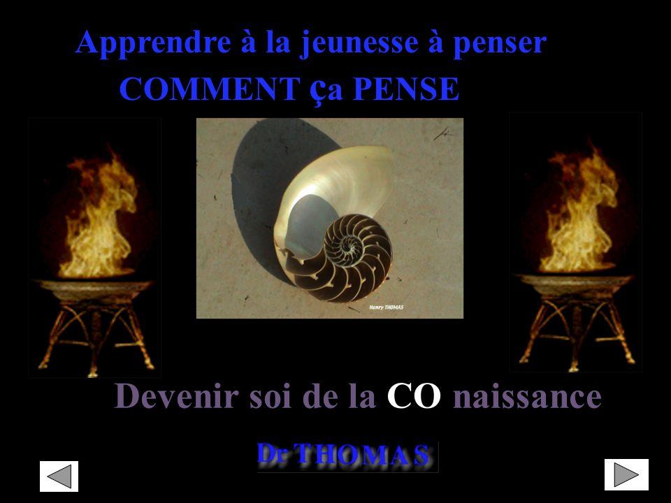PAF 2007-2008-2009 Rectorat de Nantes – DAFPEN Identité et Mythologie « Identité et Mythologie » mythes grecs Introduction dans la scolarité dune acti