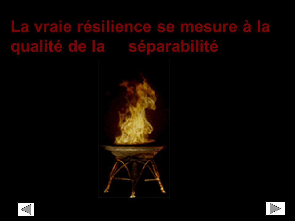 La vraie résilience se mesure à la qualité de la séparabilité
