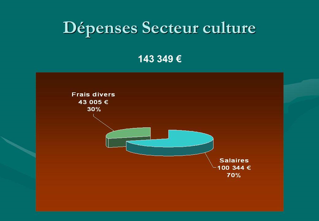 Dépenses Secteur culture 143 349