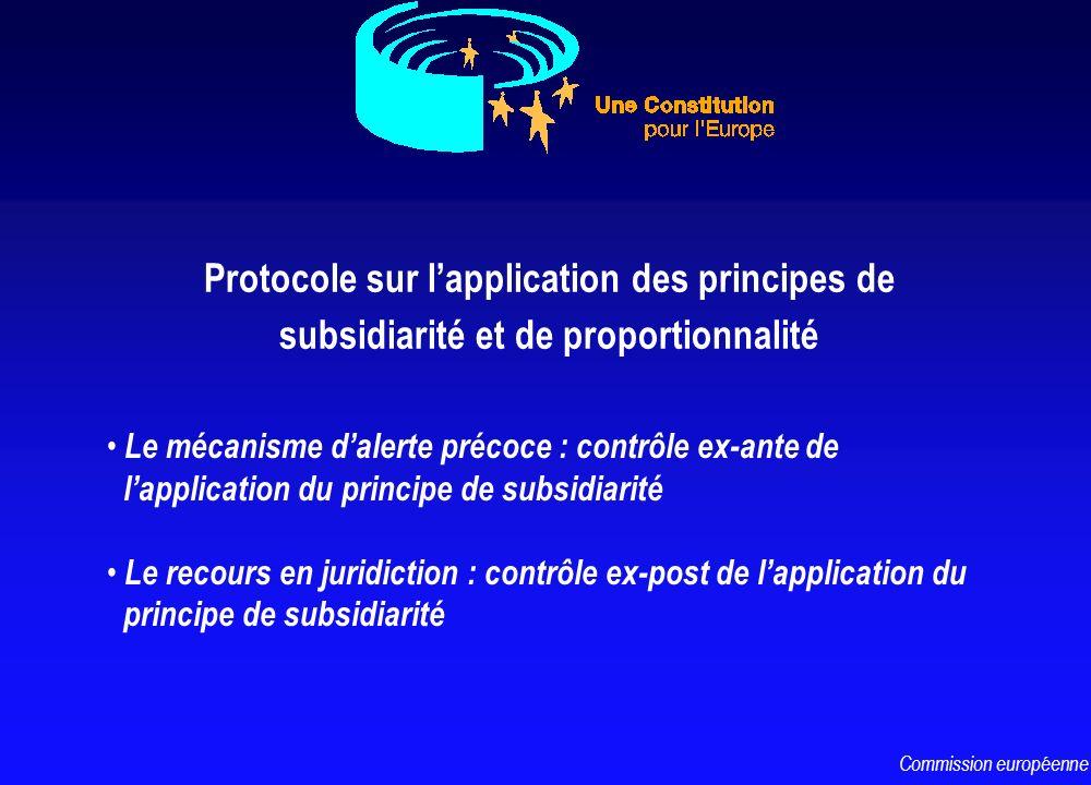 Le mécanisme dalerte précoce : contrôle ex-ante de lapplication du principe de subsidiarité Le recours en juridiction : contrôle ex-post de lapplicati