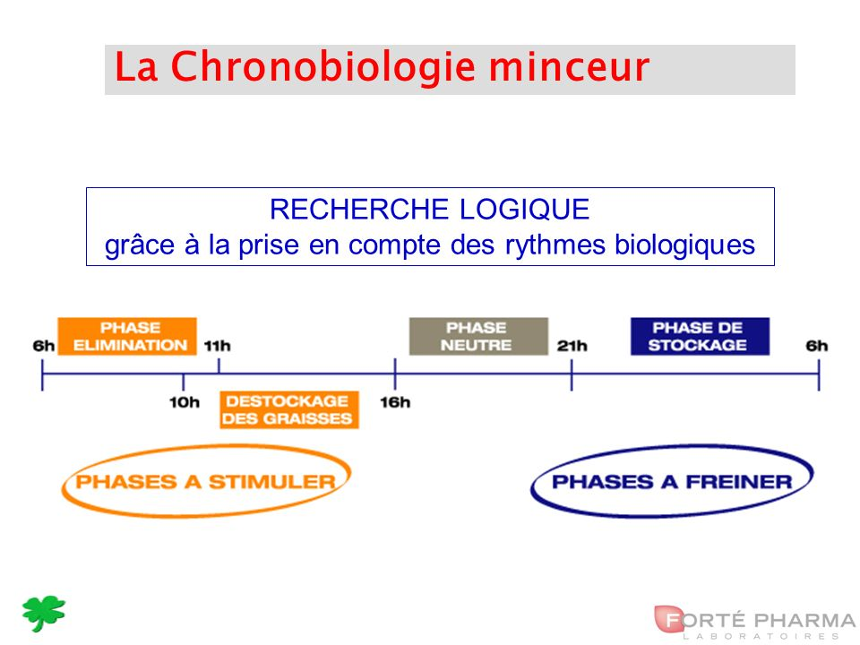 32 La Chronobiologie minceur RECHERCHE LOGIQUE grâce à la prise en compte des rythmes biologiques