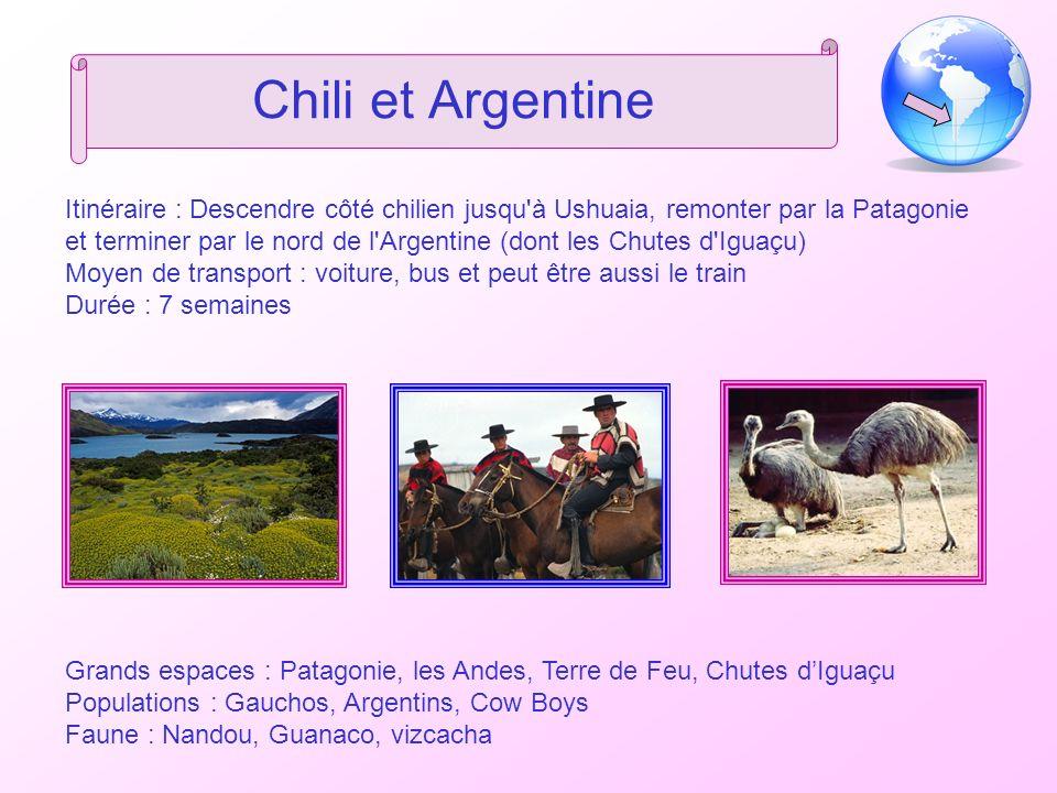 Chili et Argentine Itinéraire : Descendre côté chilien jusqu à Ushuaia, remonter par la Patagonie et terminer par le nord de l Argentine (dont les Chutes d Iguaçu) Moyen de transport : voiture, bus et peut être aussi le train Durée : 7 semaines Grands espaces : Patagonie, les Andes, Terre de Feu, Chutes dIguaçu Populations : Gauchos, Argentins, Cow Boys Faune : Nandou, Guanaco, vizcacha