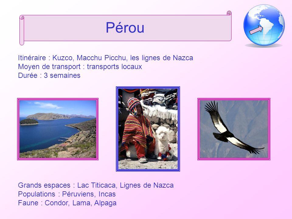 Pérou Itinéraire : Kuzco, Macchu Picchu, les lignes de Nazca Moyen de transport : transports locaux Durée : 3 semaines Grands espaces : Lac Titicaca, Lignes de Nazca Populations : Péruviens, Incas Faune : Condor, Lama, Alpaga