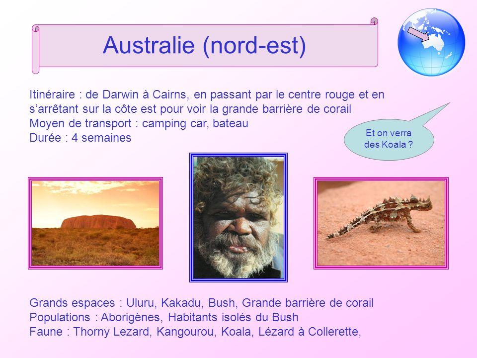 Australie (nord-est) Itinéraire : de Darwin à Cairns, en passant par le centre rouge et en sarrêtant sur la côte est pour voir la grande barrière de corail Moyen de transport : camping car, bateau Durée : 4 semaines Grands espaces : Uluru, Kakadu, Bush, Grande barrière de corail Populations : Aborigènes, Habitants isolés du Bush Faune : Thorny Lezard, Kangourou, Koala, Lézard à Collerette, Et on verra des Koala ?