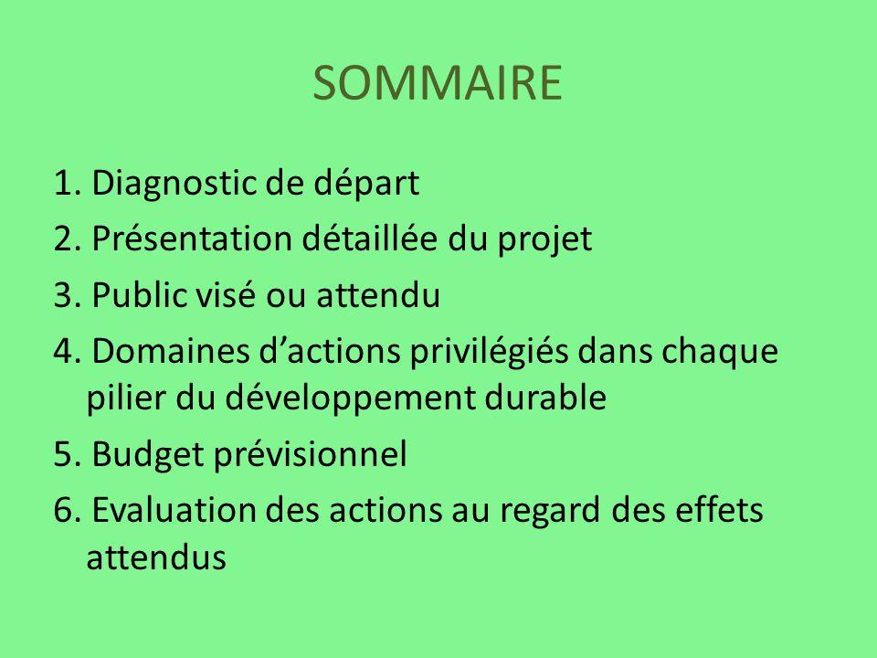 SOMMAIRE 1. Diagnostic de départ 2. Présentation détaillée du projet 3. Public visé ou attendu 4. Domaines dactions privilégiés dans chaque pilier du