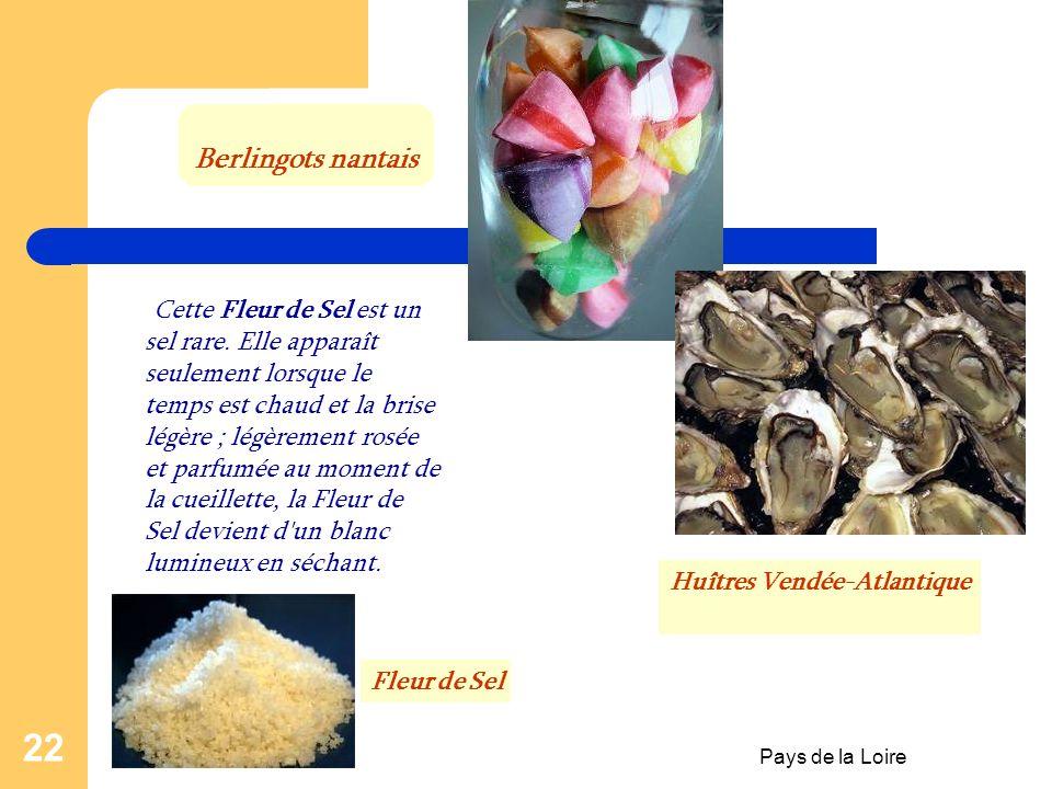 Pays de la Loire 21 Spécialités culinaires et gastronomie Gros sel, sel fin et Fleur de Sel, mélangé à toutes sortes d'épices, vous apprendrez des pal
