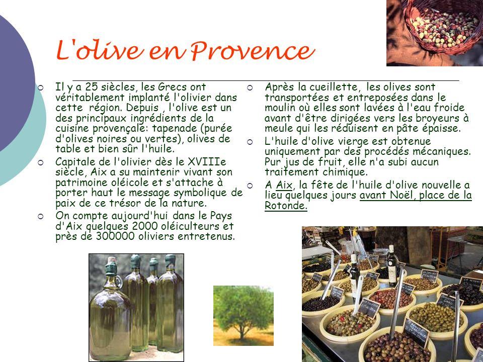 L'olive en Provence Il y a 25 siècles, les Grecs ont véritablement implanté l'olivier dans cette région. Depuis, l'olive est un des principaux ingrédi