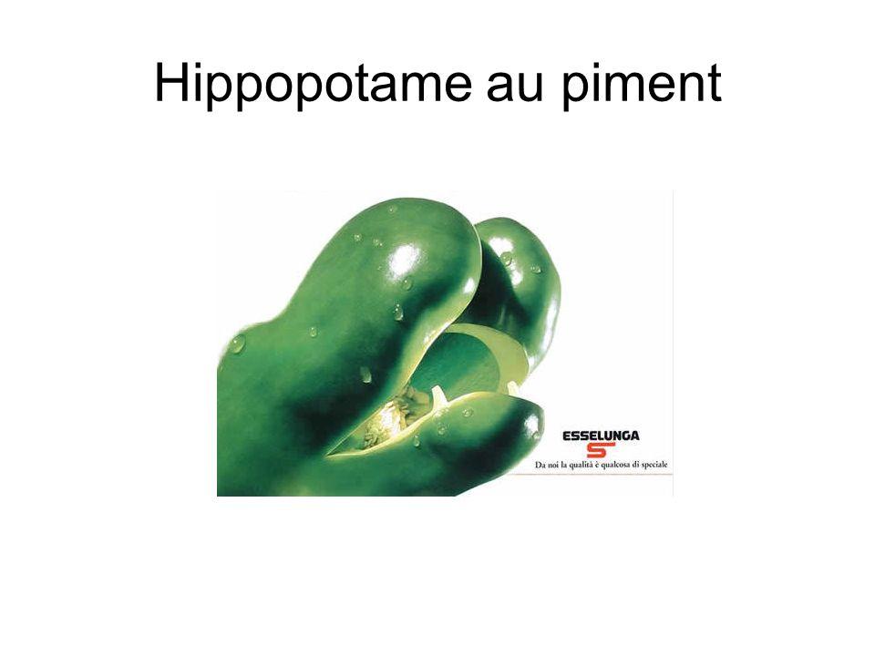 Hippopotame au piment