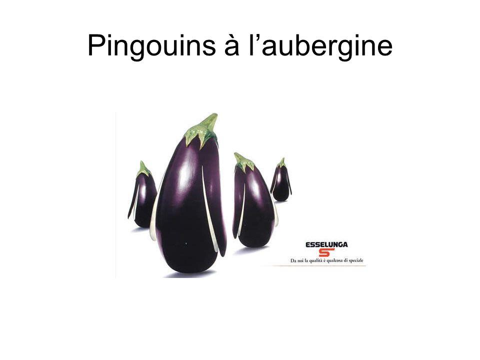 Pingouins à laubergine