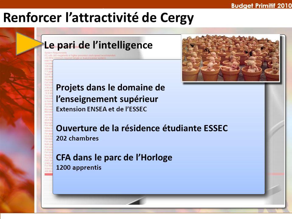 Budget Primitif 2010 Projets dans le domaine de lenseignement supérieur Extension ENSEA et de lESSEC Ouverture de la résidence étudiante ESSEC 202 cha