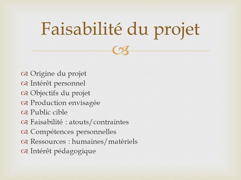 Origine du projet Intérêt personnel Objectifs du projet Production envisagée Public cible Faisabilité : atouts/contraintes Compétences personnelles Re