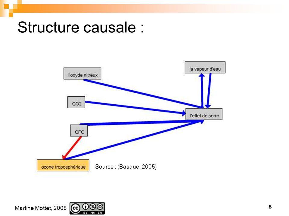 Martine Mottet, 2008 8 Structure causale : Source : (Basque, 2005)