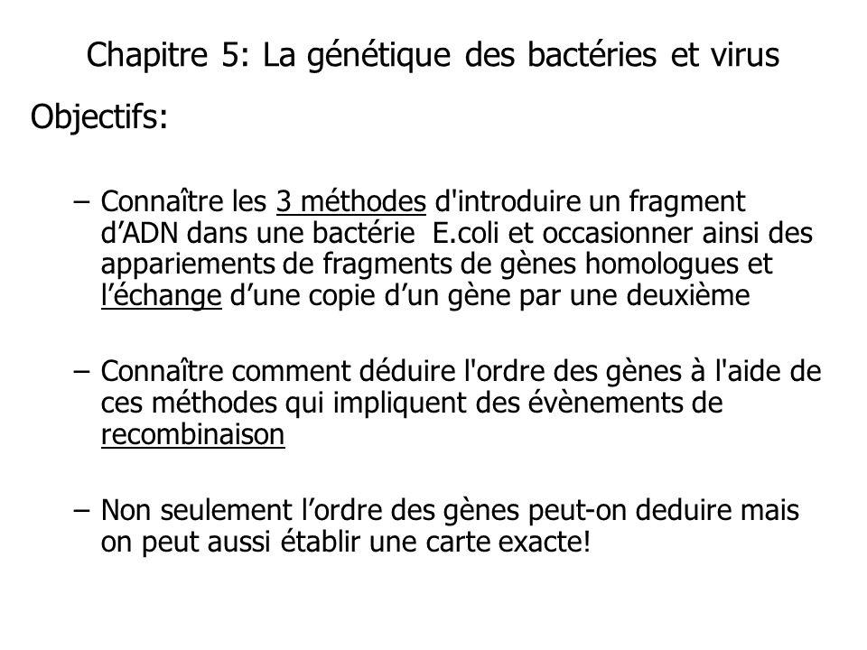 Chapitre 5: La génétique des bactéries et virus Objectifs: –Connaître les 3 méthodes d'introduire un fragment dADN dans une bactérie E.coli et occasio