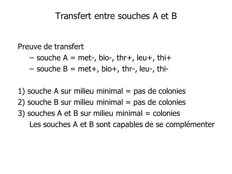 Preuve de transfert –souche A = met-, bio-, thr+, leu+, thi+ –souche B = met+, bio+, thr-, leu-, thi- 1) souche A sur milieu minimal = pas de colonies