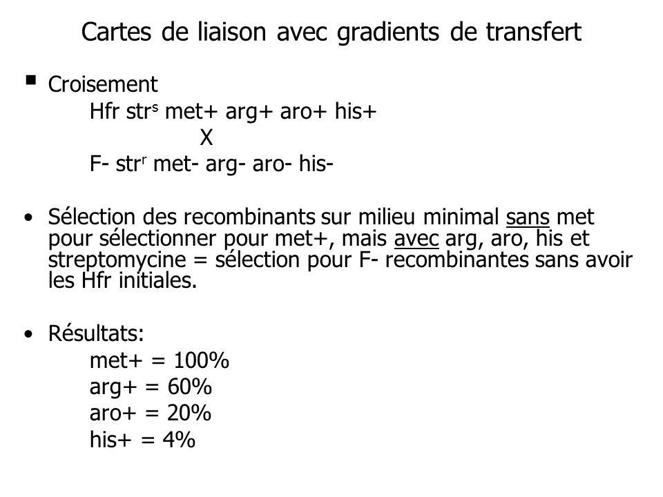 Cartes de liaison avec gradients de transfert Croisement Hfr str s met+ arg+ aro+ his+ X F- str r met- arg- aro- his- Sélection des recombinants sur m