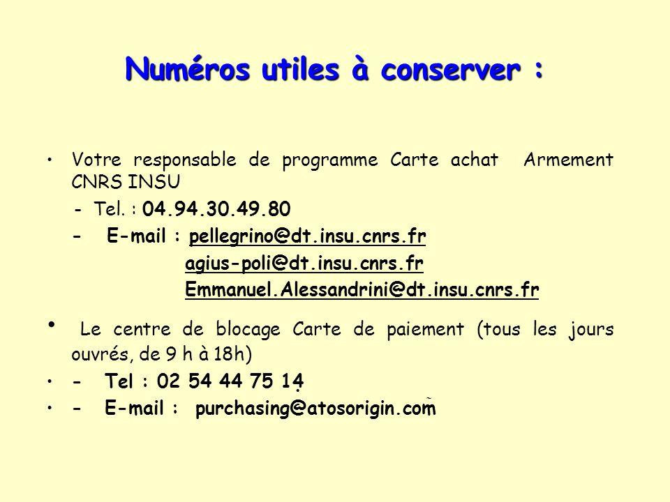 Numéros utiles à conserver : Votre responsable de programme Carte achat Armement CNRS INSU - Tel. : 04.94.30.49.80 - E-mail : pellegrino@dt.insu.cnrs.