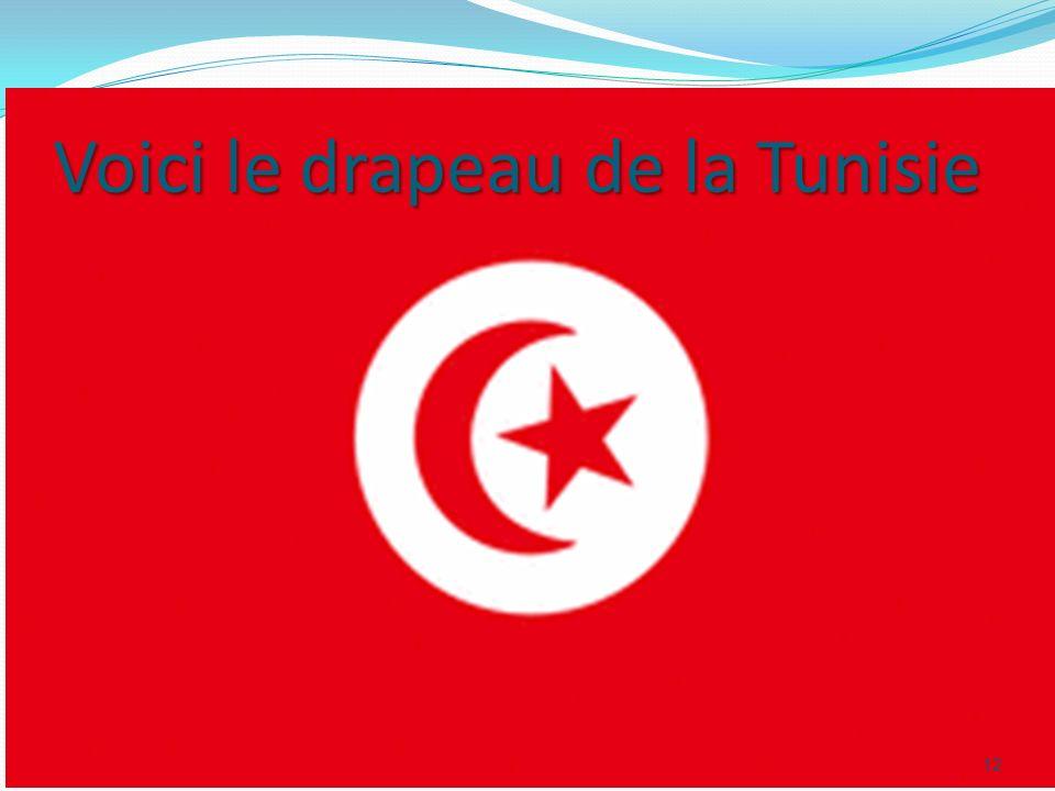 Voici le drapeau de la Tunisie 12