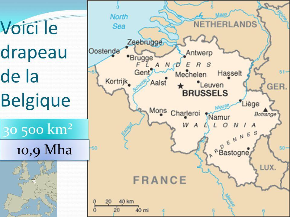 Voici le drapeau de la Belgique 35 30 500 km² 10,9 Mha