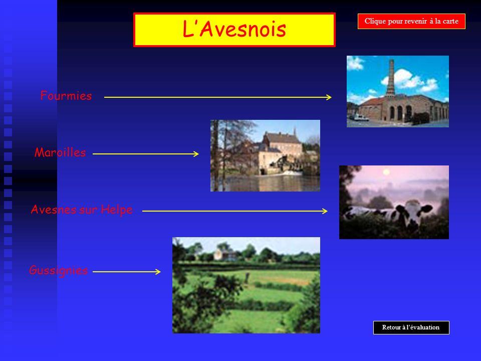 LAvesnois Fourmies Maroilles Gussignies Avesnes sur Helpe Clique pour revenir à la carte Retour à lévaluation