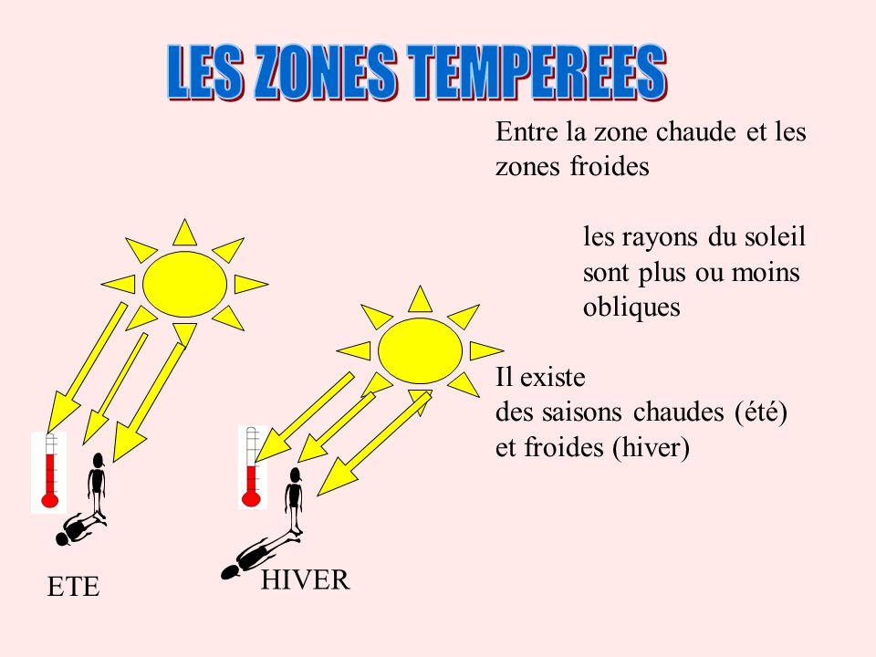 Entre la zone chaude et les zones froides les rayons du soleil sont plus ou moins obliques Il existe des saisons chaudes (été) et froides (hiver) HIVE
