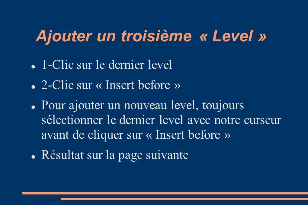 Ajouter un troisième « Level » 1-Clic sur le dernier level 2-Clic sur « Insert before » Pour ajouter un nouveau level, toujours sélectionner le dernier level avec notre curseur avant de cliquer sur « Insert before » Résultat sur la page suivante