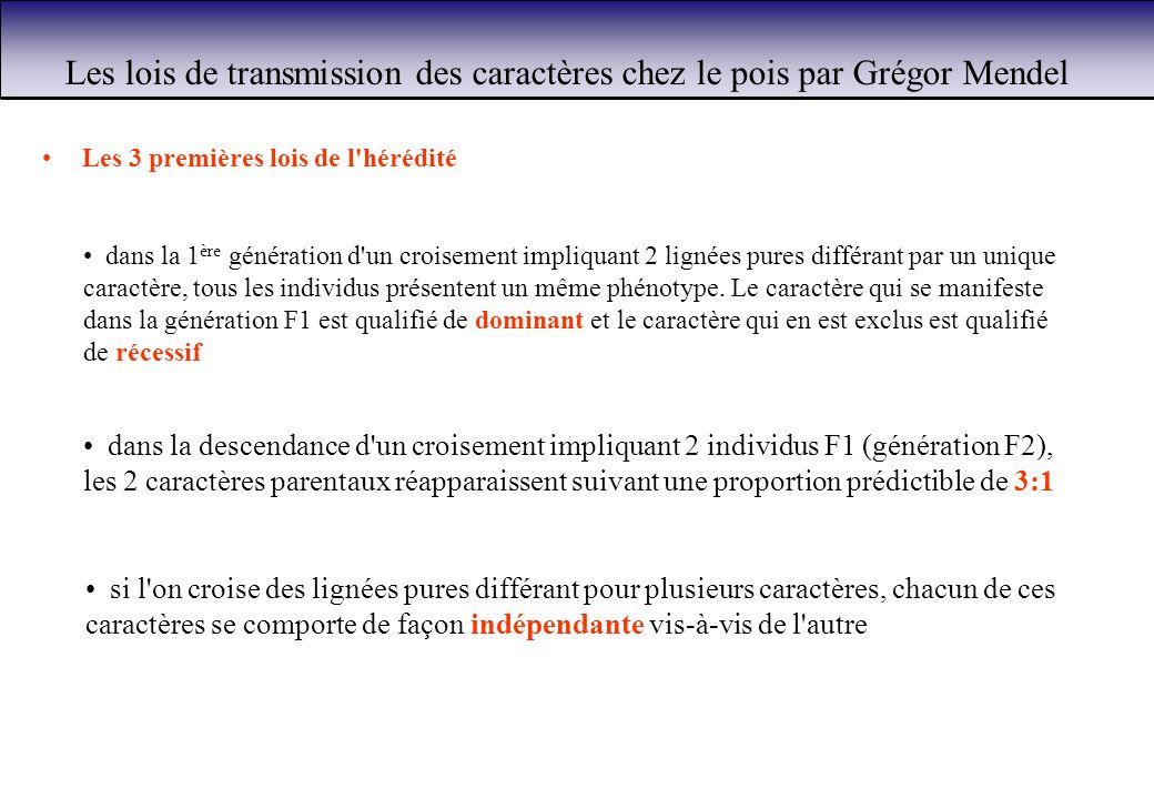 Les lois de transmission des caractères chez le pois par Grégor Mendel Les 3 premières lois de l'hérédité si l'on croise des lignées pures différant p