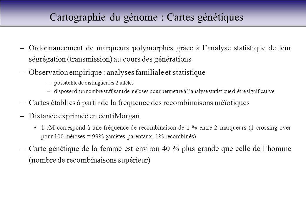Cartographie du génome : Cartes génétiques –Ordonnancement de marqueurs polymorphes grâce à lanalyse statistique de leur ségrégation (transmission) au