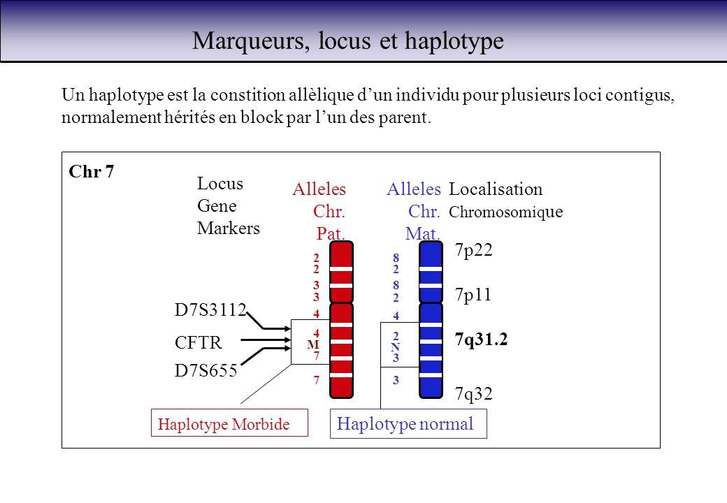 Marqueurs, locus et haplotype 7q31.2 Localisation Chromosomiq ue 7q32 7p22 7p11 D7S655 Locus Gene Markers D7S3112 CFTR Chr 7 M Alleles Chr. Pat. 2 3 4
