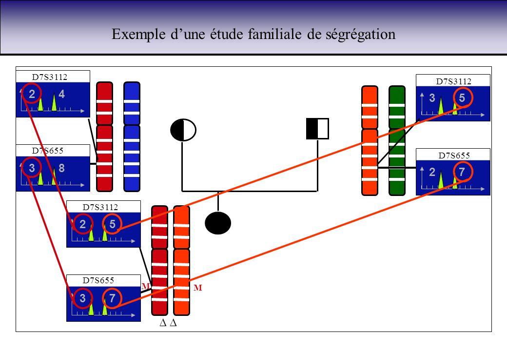 Exemple dune étude familiale de ségrégation D7S3112 42 53 52 D7S655 83 72 73 M M