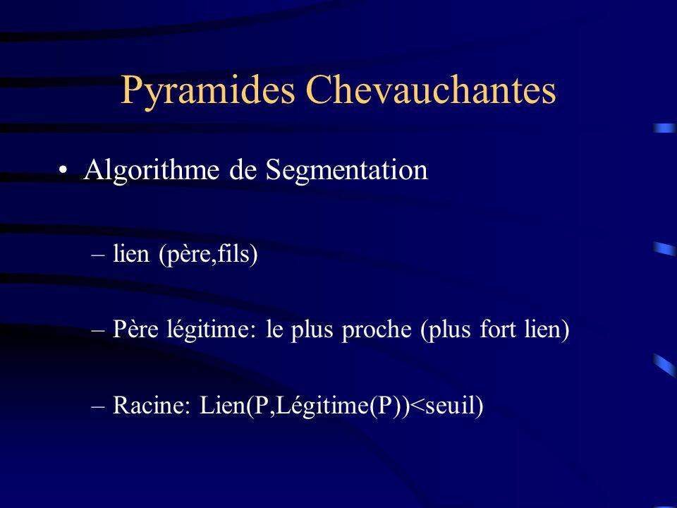 Pyramides Chevauchantes Algorithme de Segmentation –lien (père,fils) –Père légitime: le plus proche (plus fort lien) –Racine: Lien(P,Légitime(P))<seuil)