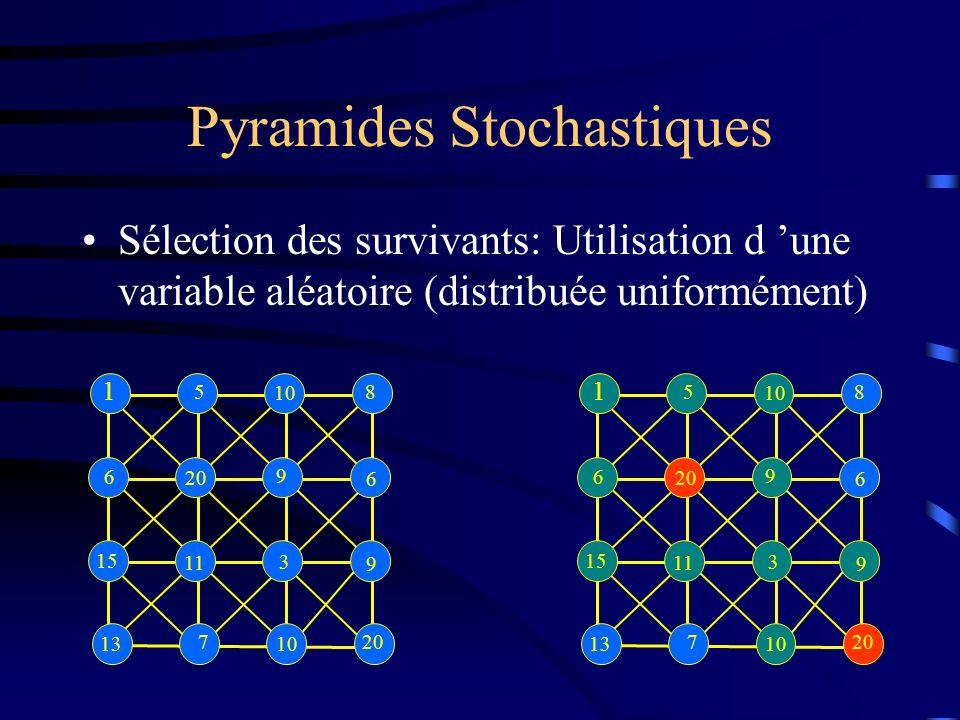 Pyramides Stochastiques Sélection des survivants: Utilisation d une variable aléatoire (distribuée uniformément) 1 5 10 8 6 20 9 6 15 11 3 9 13 7 10 20 1 5 10 8 6 20 9 6 15 11 3 9 13 7 10 20