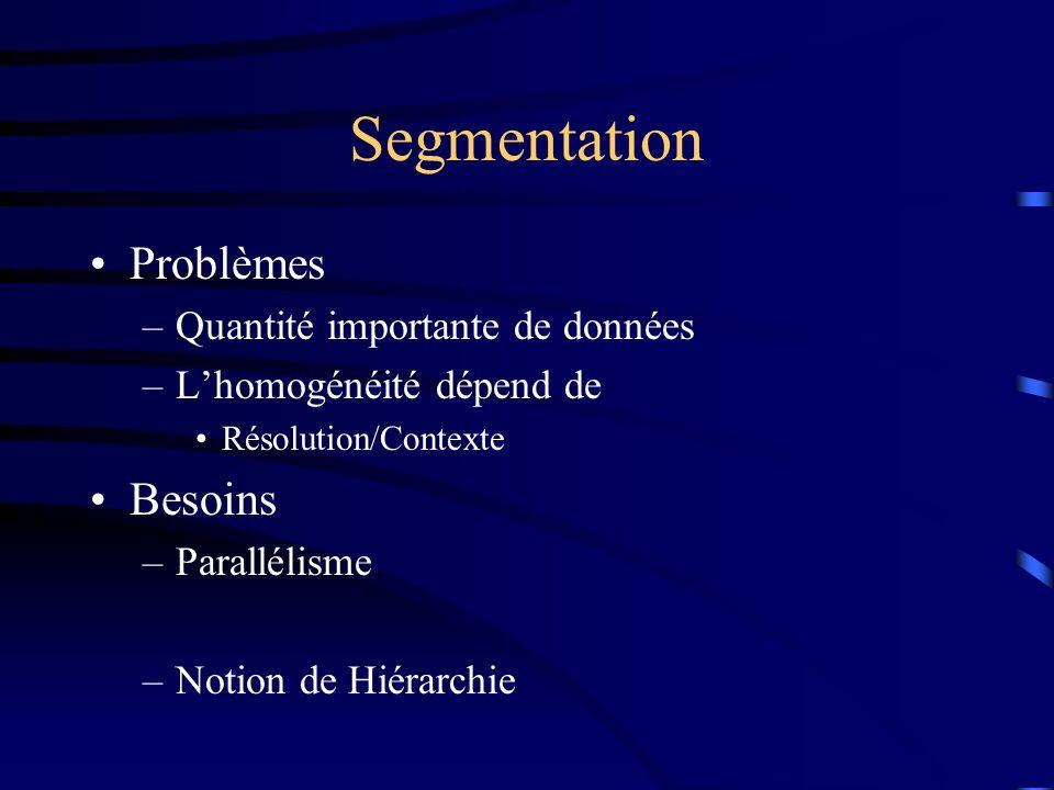 Segmentation Problèmes –Quantité importante de données –Lhomogénéité dépend de Résolution/Contexte Besoins –Parallélisme –Notion de Hiérarchie